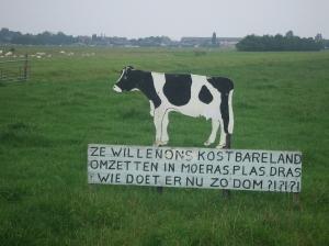 Onrust in polder Middelblok nabij Gouderak (foto: René Hoeflaak)
