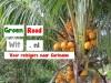Voor reizigers in en naar Suriname