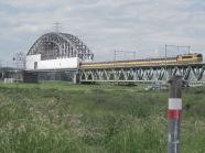 Vrijdag 22 juni 2012: De Rosandepolder bij Arnhem. Op de achtergrond de Spoorbrug over de Rijn. (foto: René Hoeflaak)