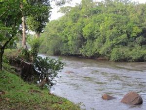 2011: Het binnenland van Suriname (foto: René Hoeflaak)
