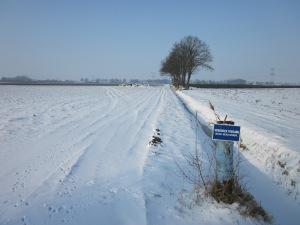 22 januari 2013: Besneeuwde landerijen bij Oudenbosch (foto: René Hoeflaak)