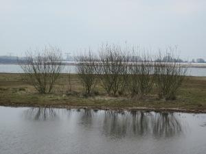 Maart 2013: Utrecht; Haarrijnse Plas in de wijk Leidsche Rijn. (foto:René Hoeflaak)