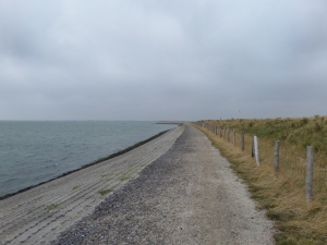 15 augustus 2013; Zeeland, Schouwen-Duiveland: Dijk langs de Oosterschelde (foto: René Hoeflaak)