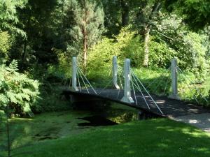 Rotterdam, 27 augustus 2013: Arboretum Trompenburg (foto: René Hoeflaak)
