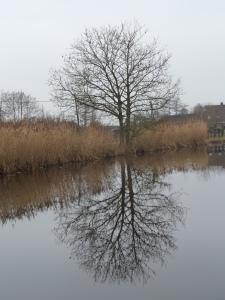 21 januari 2014: Vlist, rivier de Vlist (foto: René Hoeflaak)