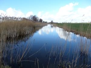 Kockengen, Wagedijk (foto: René Hoeflaak)