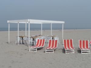 31 maart 2014: Wederom een warme voorjaarsdag aan het strand van Hoek van Holland (foto: René Hoeflaak)