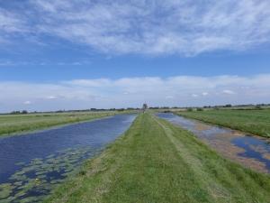 20 mei 2014: Molenvliergang in de polders tussen Aarlanderveen en Zwammerdam (foto: René Hoeflaak)