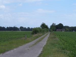Elim, Drenthe, 14 juni 2014:   het pad Jan Kielwijk (foto: René Hoeflaak)