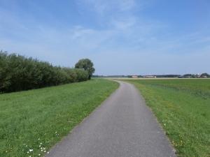 1 augustus 2014: Oud Hoenderhoeksedijk tussen Simonshaven en Geervliet (foto: René Hoeflaak)