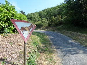 11 juni 2015: pad aan de rand van Lalinde, Frankrijk (foto: René Hoeflaak)