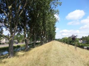 15 juli 2015: Geniedijk bij Hoofddorp (foto: René Hoeflaak)