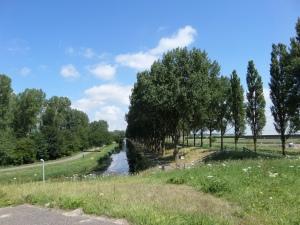 16 juli 2015: Geniedijk bij Vijfhuizen (foto: René Hoeflaak)