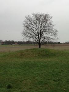 29 januari 2016: grafheuvel op de Soester Eng (foto: René Hoeflaak)