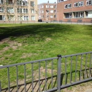 Rotterdam, 2 mei 2016: Joodse begraafplaats aan de Jan Van Loonslaan (foto: René Hoeflaak)