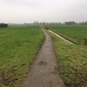 13 november 2016: Korte Kerkpad in de polder bij Weipoort (foto: René Hoeflaak)
