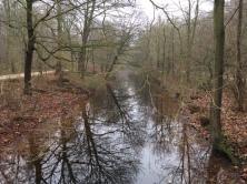 Het Haagse Bos, 23 december 2017 (foto: René Hoeflaak)