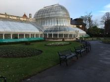 Belfast, Noord-Ierland, 14 januari 2017: Palm House (foto: René Hoeflaak)